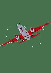 Reclamar cancelacion vuelo